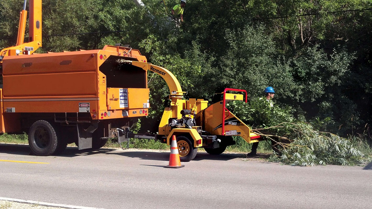 Commercial Tree Services-Temecula Tree Trimming and Stump Grinding Services-We Offer Tree Trimming Services, Tree Removal, Tree Pruning, Tree Cutting, Residential and Commercial Tree Trimming Services, Storm Damage, Emergency Tree Removal, Land Clearing, Tree Companies, Tree Care Service, Stump Grinding, and we're the Best Tree Trimming Company Near You Guaranteed!