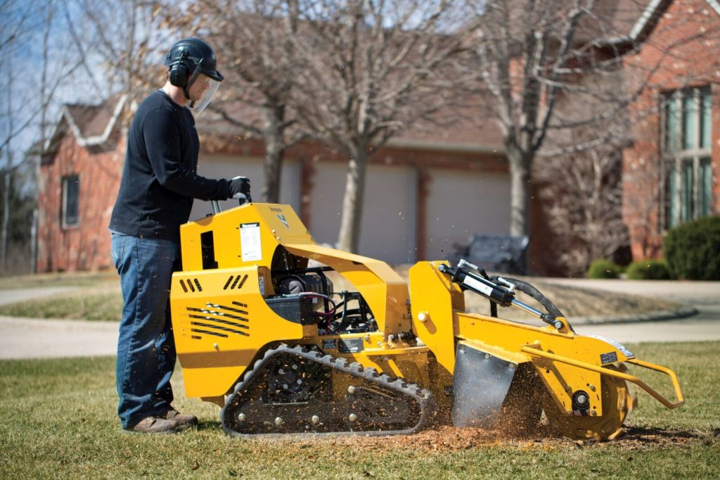 Wildomar-Temecula Tree Trimming and Stump Grinding Services-We Offer Tree Trimming Services, Tree Removal, Tree Pruning, Tree Cutting, Residential and Commercial Tree Trimming Services, Storm Damage, Emergency Tree Removal, Land Clearing, Tree Companies, Tree Care Service, Stump Grinding, and we're the Best Tree Trimming Company Near You Guaranteed!